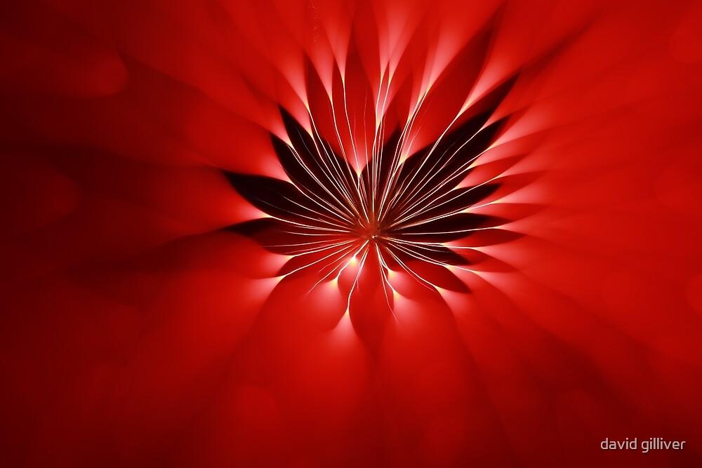 fireworks 9/12/18 by david gilliver
