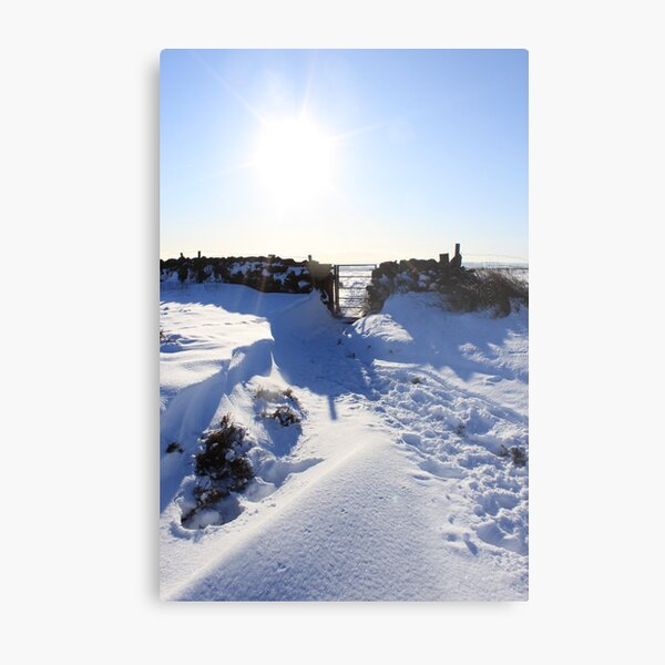 snow time the best Metal Print
