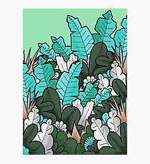 Green jungle leaves Photographic Print
