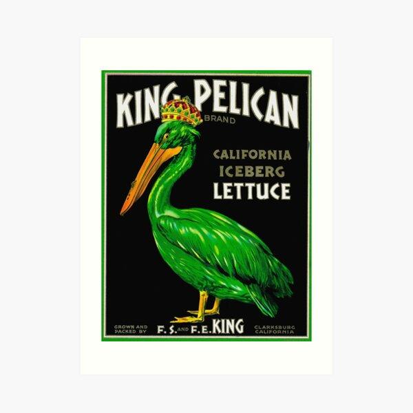 King Pelican Art Print