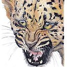 Leopard Cub by Meaghan Roberts