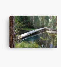 Log on Water Reflection Metal Print