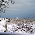Winter's Beauty by kkphoto1