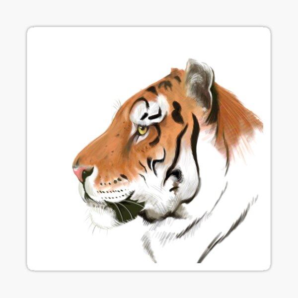 Portrait of a Tiger on white background Sticker