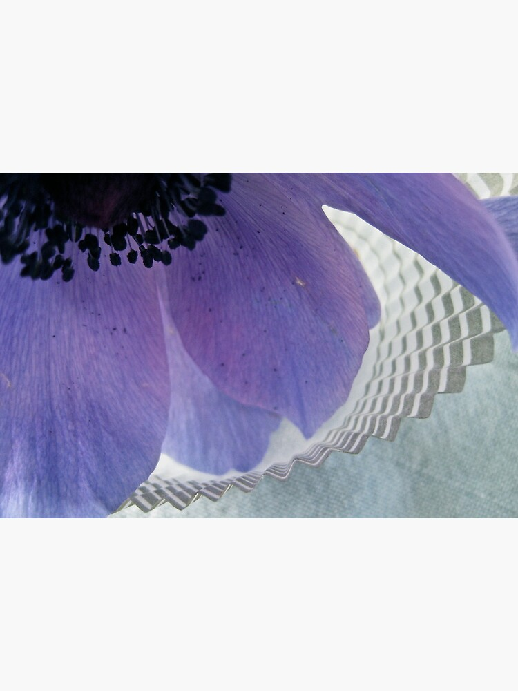 Anemone & Paper by LynnWiles