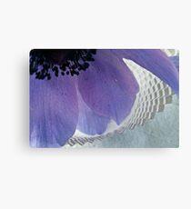 Anemone & Paper Canvas Print