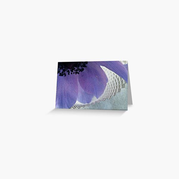 Anemone & Paper Greeting Card