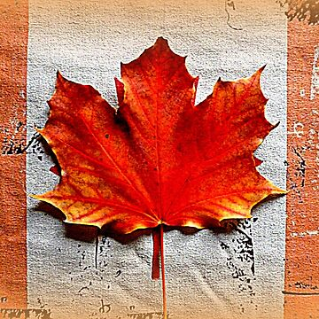 The Maple Leaf Forever by angel1
