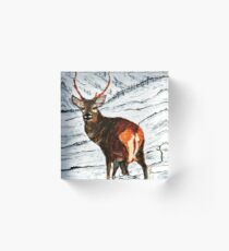 Stag in snowy landscape Acrylic Block