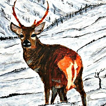 Stag in snowy landscape by ditempli