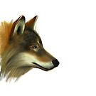 Portrait of a Wolf without background colour by artbywilf