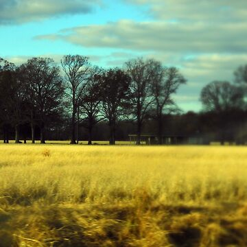 Farm Land in Tilt Shift by WildestArt
