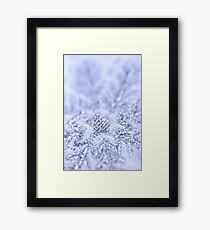Blue coldness Framed Print