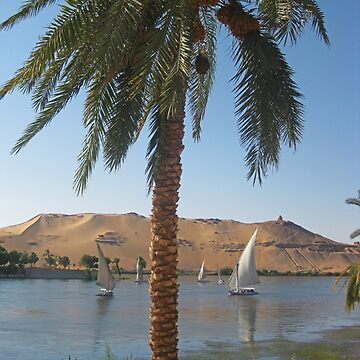Feluccas on the Nile River by Johnhalifax