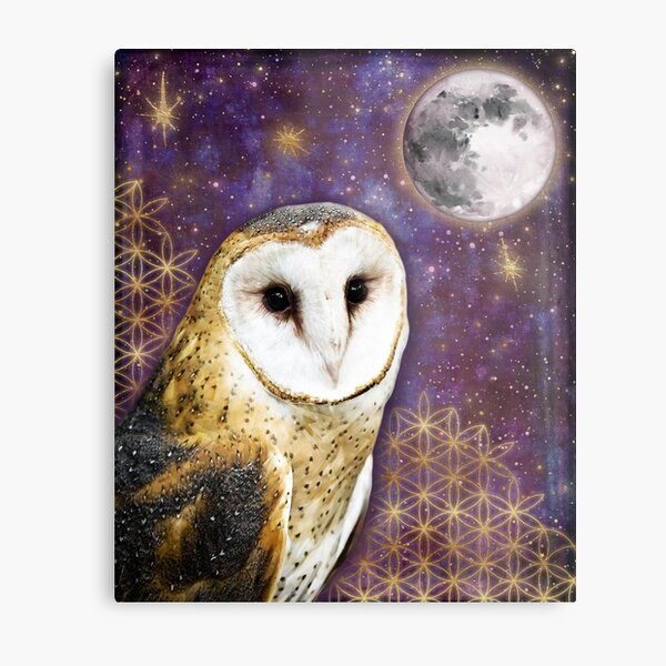 Magical owl sacred geometry tapestry gold stars watercolor moon tapestry moon and owl Metal Print