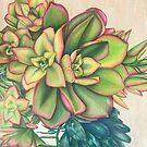 Succulent Touch  by DaniKent
