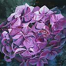 Twilight Hydrangea von Emma   Reznikova