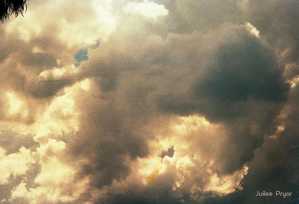 heaven's gate by Juilee  Pryor