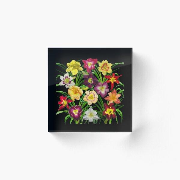 Display of Daylilies I - on black Acrylic Block