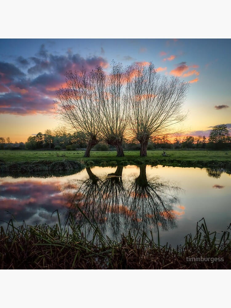 Autumn on the River Stour by timmburgess