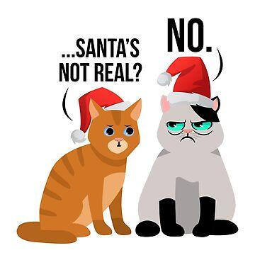 Santa's Not Real Funny Cats Wear Santa Hat Humorous Gift by oceanwaves