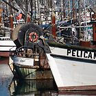 Pelican Ship - Newport, OR by searchlight