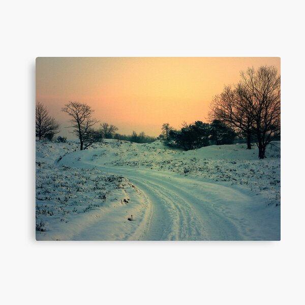Road in the Snow Canvas Print
