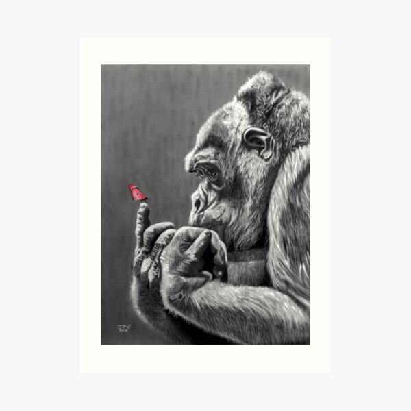 Butterfly and Gorilla Art Print