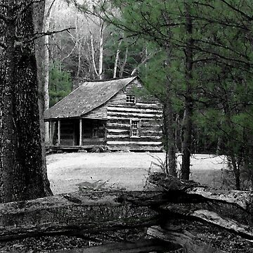 Carter Shields Cabin VIII by suddath