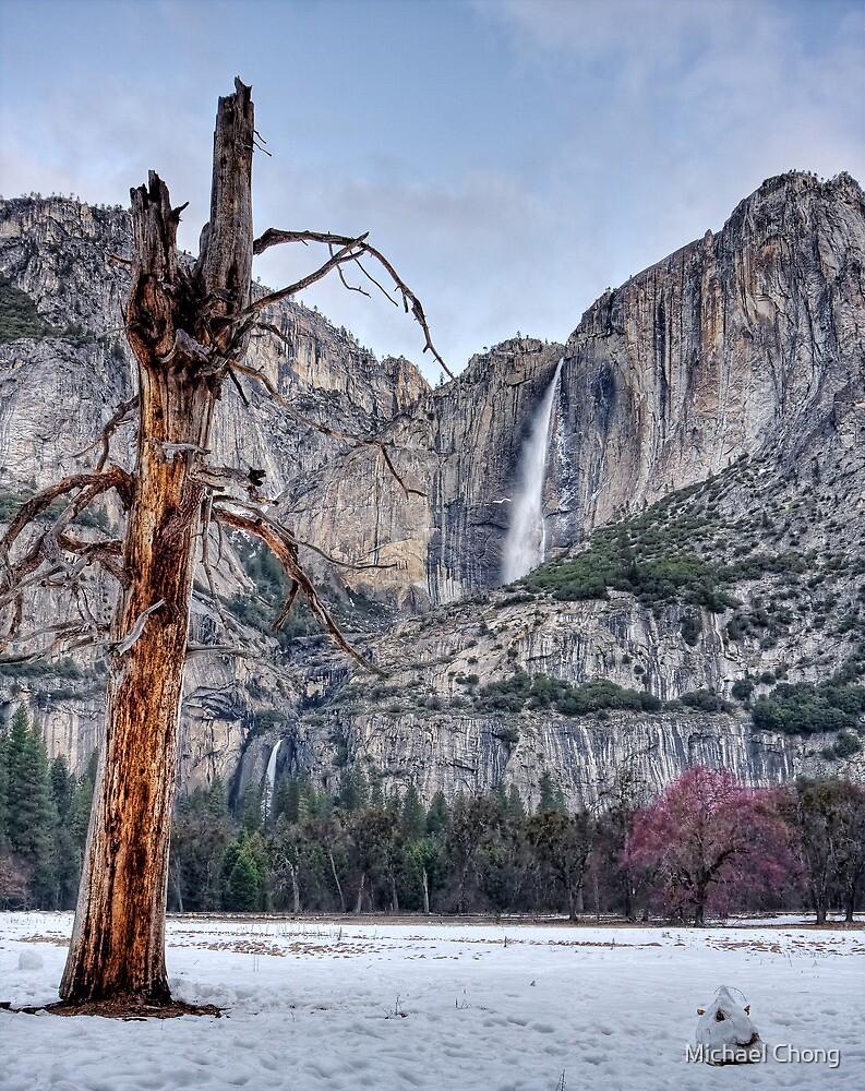 Yosemite Falls - Yosemite National Park by Michael Chong