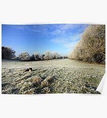 Corofin farm in winter Poster