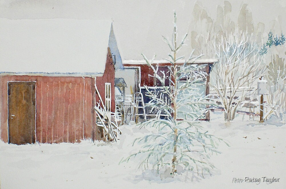 Snow,tree,barn by Peter Lusby Taylor