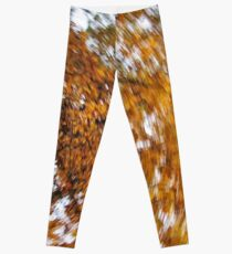 Autumn Daze II Leggings