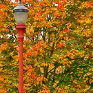 Fall Lamppost by KirtTisdale
