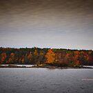 New York's Salmon river reservoir  II by PJS15204