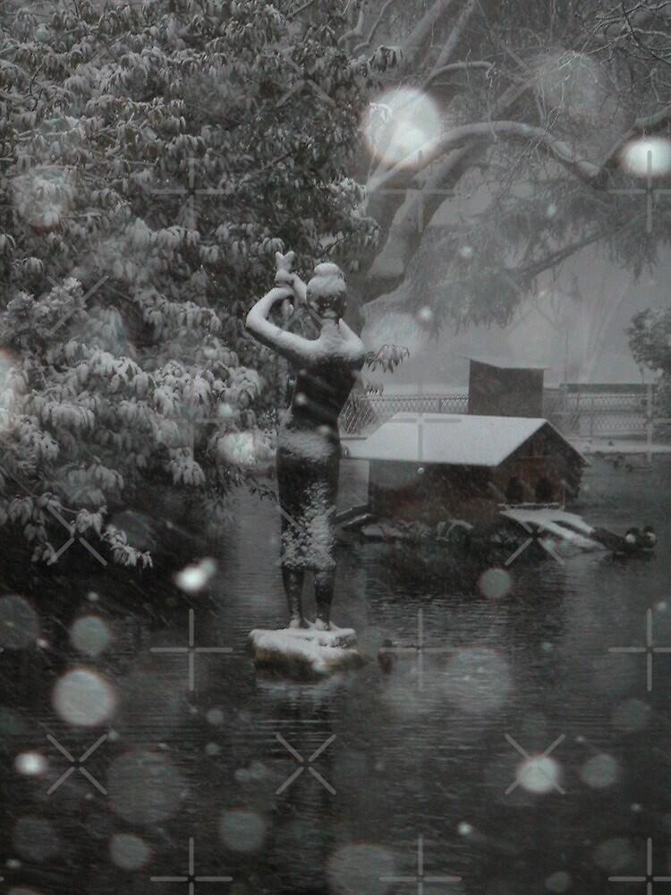 snowstorm by poupoune