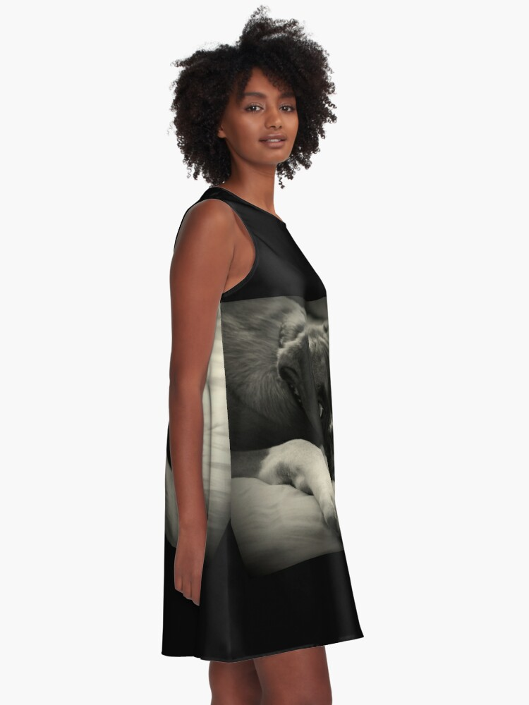 Alternative Ansicht von Zeit zum Ausruhen - Boxer Dog Series A-Linien Kleid