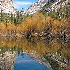Mirror Lake - Yosemite Valley - Portrait Image by TonyCrehan