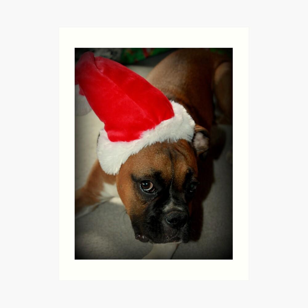 Dino ~ Santas kleiner Helfer ~ Boxer Dog Series Kunstdruck