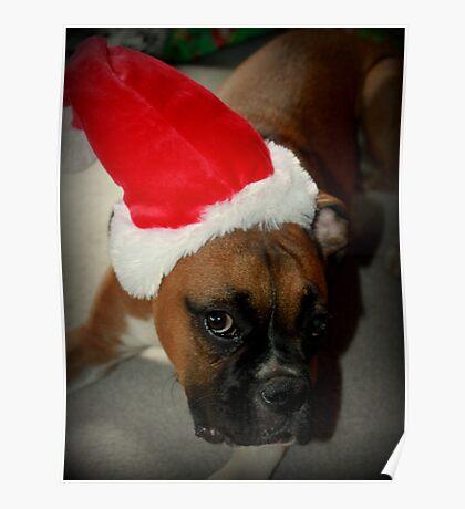 Dino ~ Santas kleiner Helfer ~ Boxer Dog Series Poster