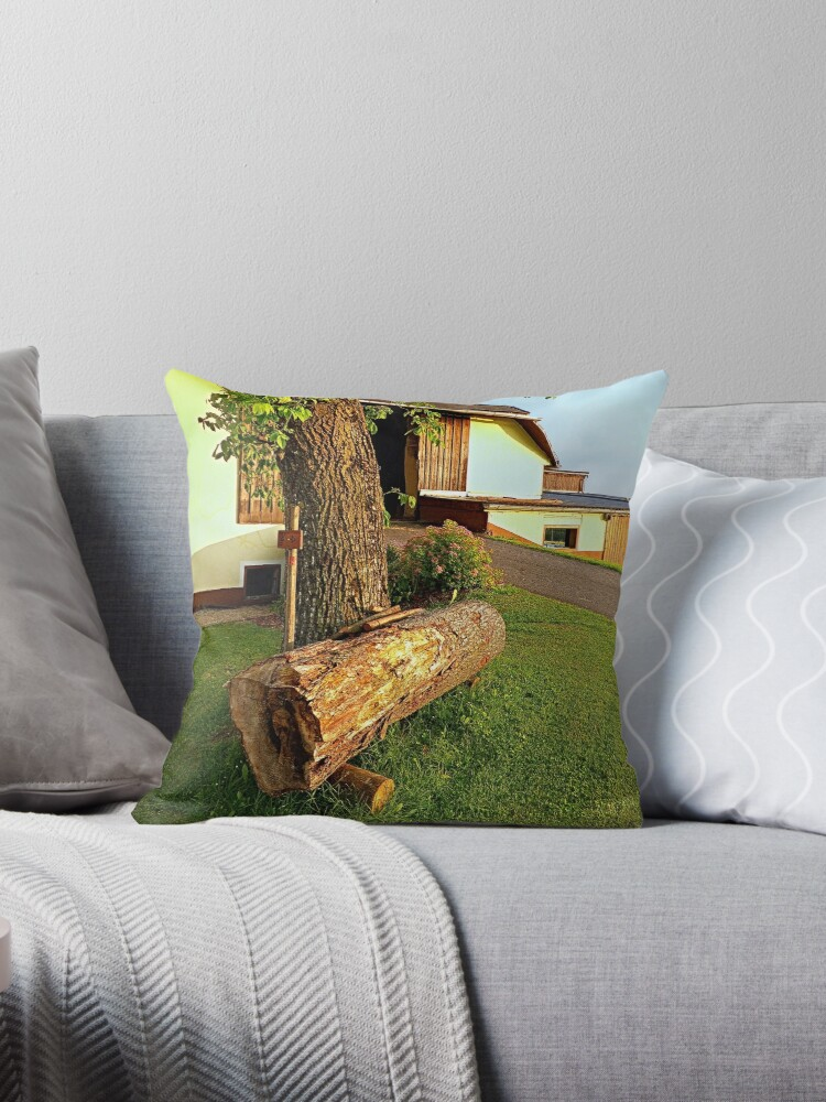 Tree trunk bench on a summer evening | landscape evening by Patrick Jobst