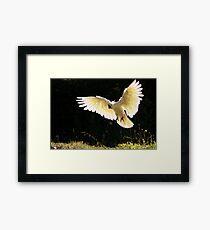 Angelic Wings Framed Print
