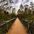 Ominous Boardwalk by Jim Haley