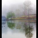 Misty Silence by Jim Haley