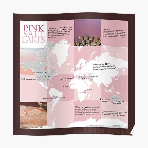 Pink Salt Lakes (dark) Poster