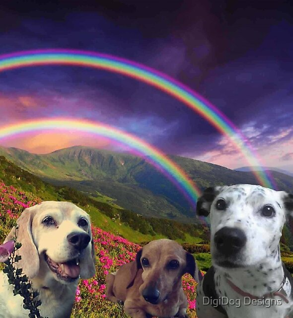 Beloveds Over the Rainbow by DigiDog Designs