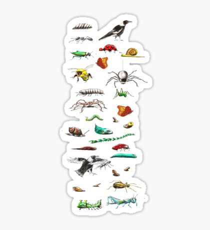 Insects & friends leggings Sticker