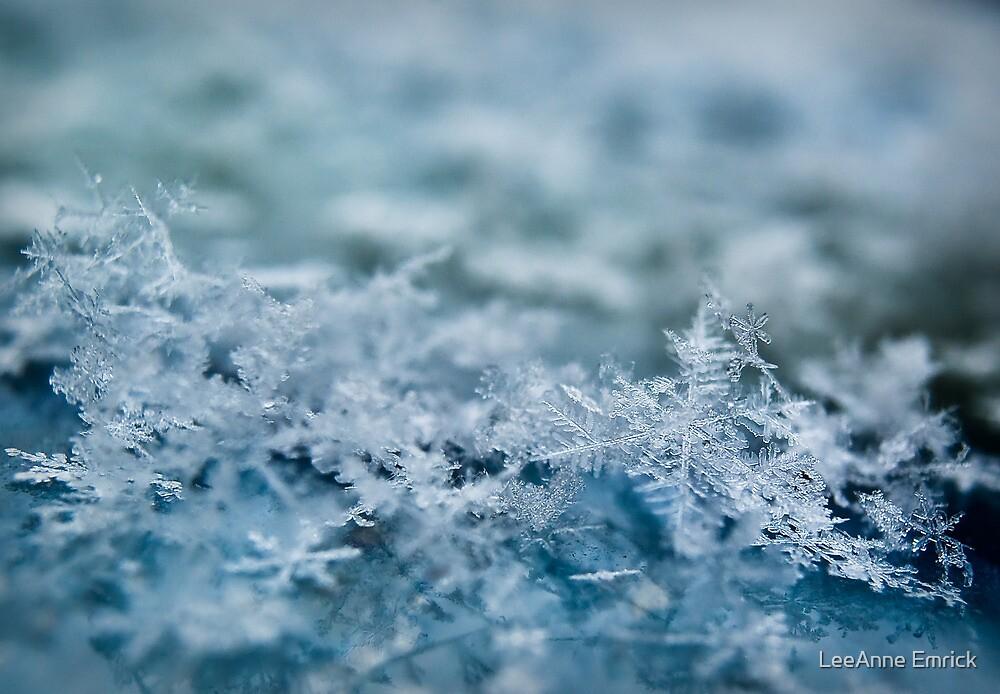 Snowflakes by LeeAnne Emrick