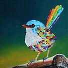 Rainbow Wren by Jacqueline Eden