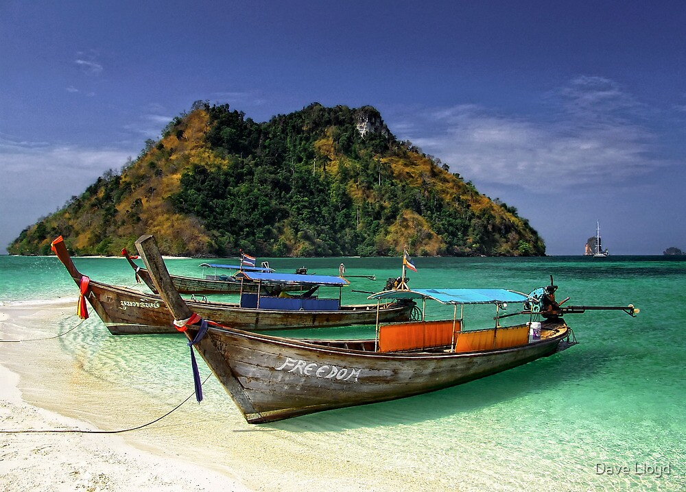 Tropical Freedom by Dave Lloyd